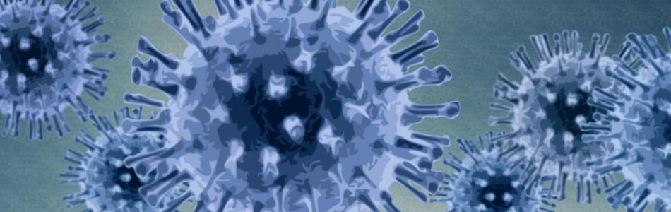 Circovirus chez les chiens