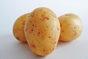 les chats peuvent-ils manger des pommes de terre