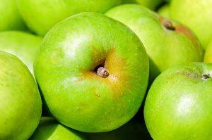 les chiens peuvent-ils manger des pommes